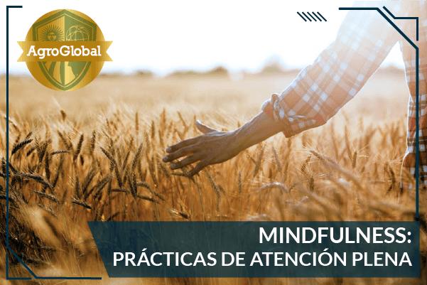 Mindfulness: Práctica de Atención Plena