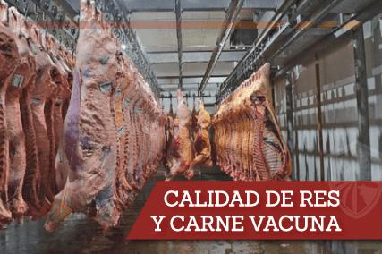1-Calidad-de-Carne
