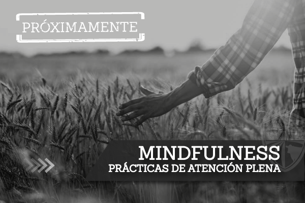 3-Mindfulness