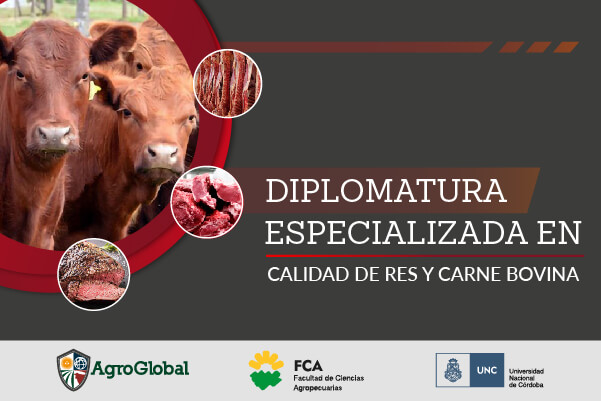 2020 Portada Web 2 – Diplomatura en calidad de carne